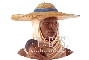 Ebony VisionsThe Protector