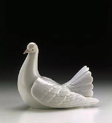 LladroProud Dove 1996-99Porcelain Figurine