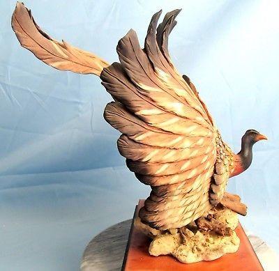 Giuseppe ArmaniGreat Argus Pheasant
