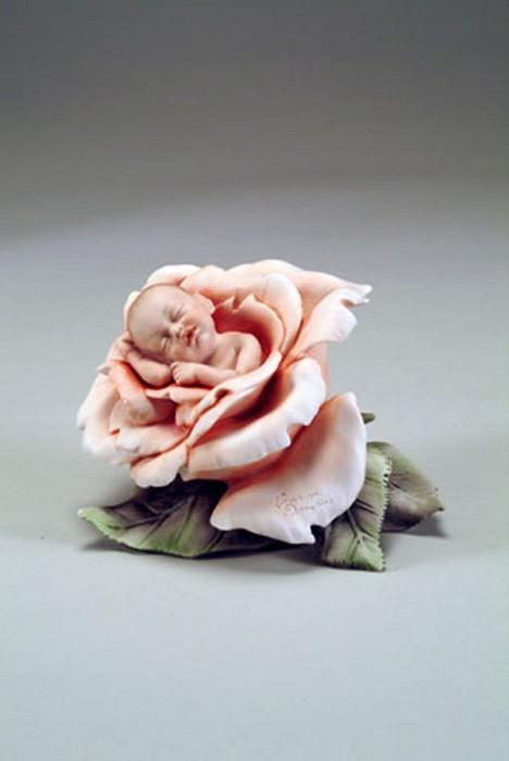 Giuseppe ArmaniLittle Rose