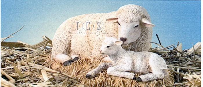 Ebony VisionsThe Nativity Sheep With Lamb