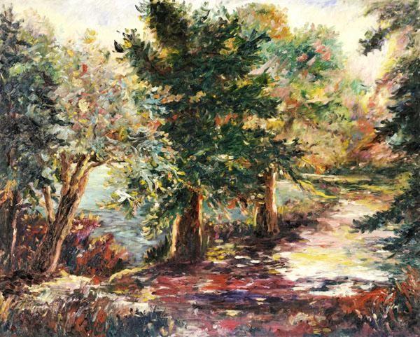 GamboaForest Path