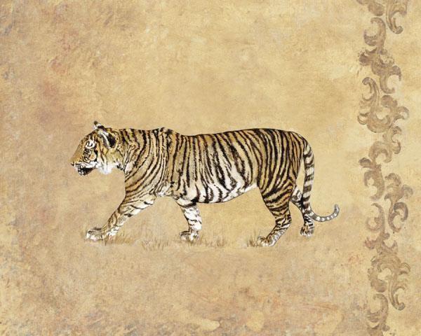 GamboaWild Tiger