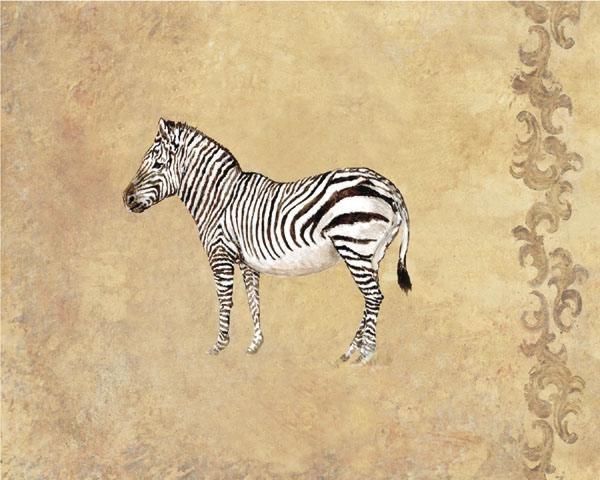 GamboaWild Zebra