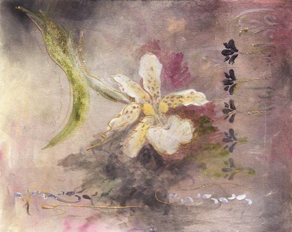 GamboaJune Orchid