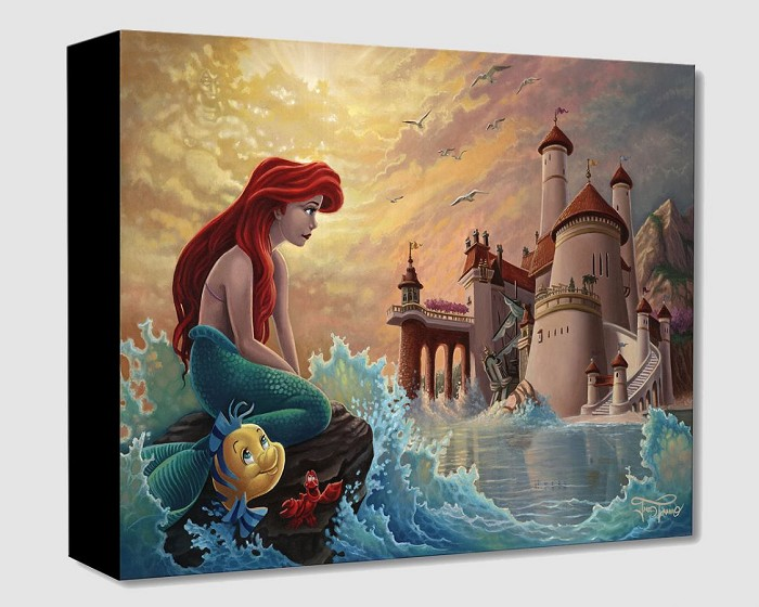 Jared Franco Ariel's Daydream Giclee On Canvas