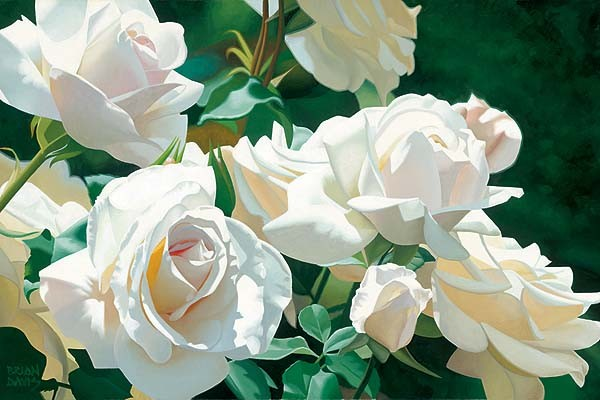 Brian DavisFrench Lace Garden