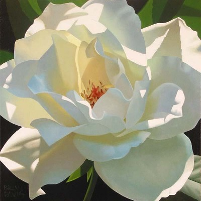Brian Davis Rose In The Shadows Giclee