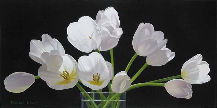 Brian DavisTwelve Tulips
