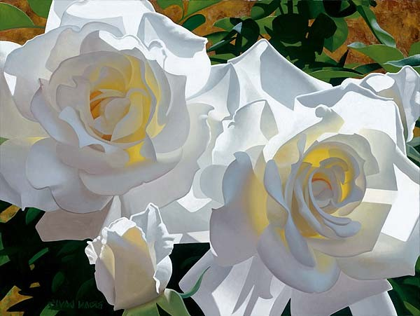 Brian DavisWhite Roses Aglow