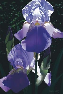 Brian DavisTwo Blue IrisesGiclee On Canvas