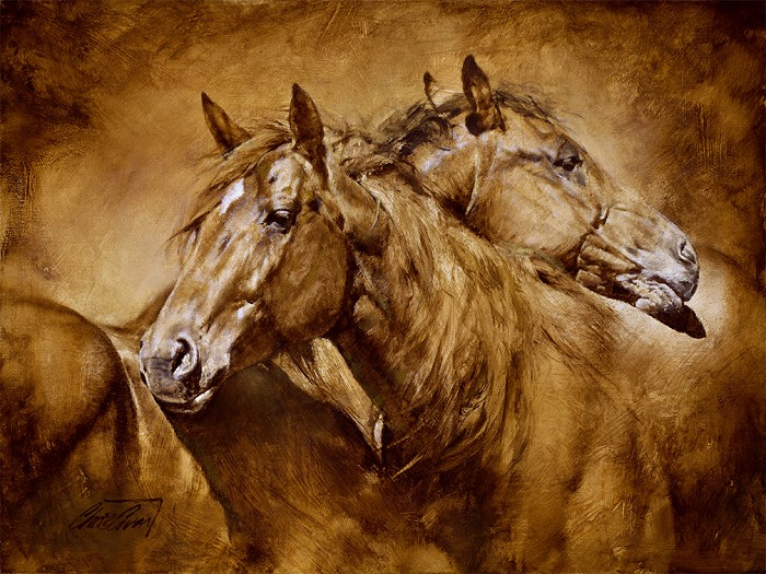 Chris  Owen Comfort Giclee On Canvas