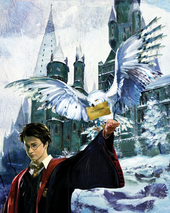 Jim Salvati Harry and Hedwig From Harry Potter Giclee On Canvas
