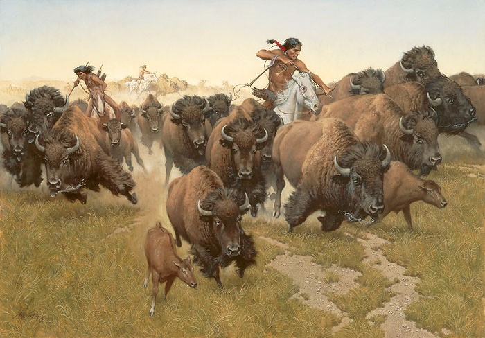 Frank McCarthy Amidst the Thundering Herd Canvas