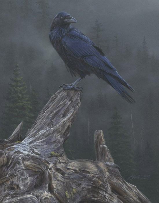 Daniel Smith Raven´s Roost Giclee On Canvas