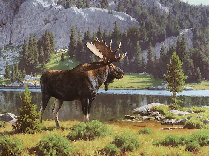 Tucker SmithMoose at Dean LakeGiclee On Canvas