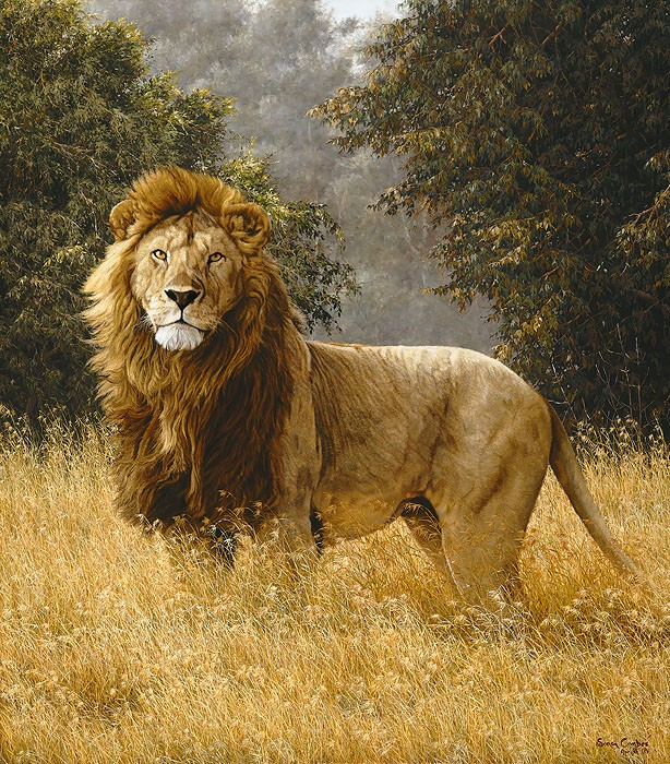 Simon Combes Simba Anniversary Edition Giclee On Canvas