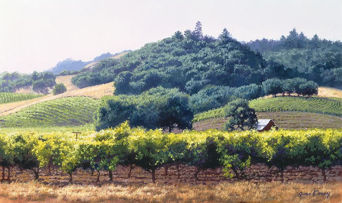 June Carey Summer Vineyard Giclee On Canvas