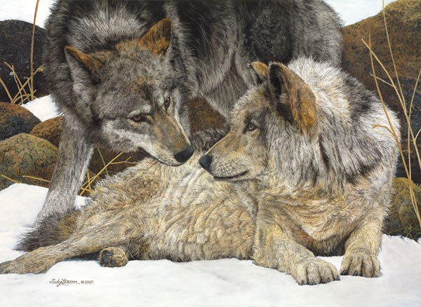 Judy Larson The Alphas Canvas