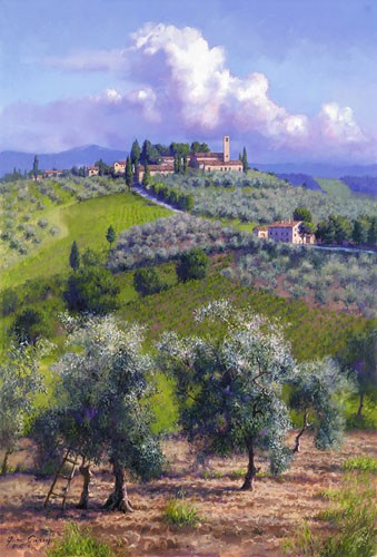 June Carey Oil Trees of Chianti Canvas