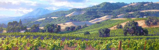 June Carey Song of the Wine Country Canvas