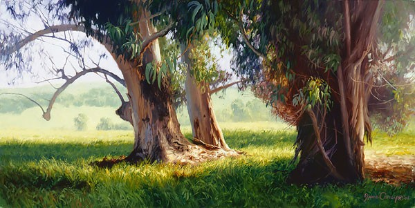 June Carey Eucalyptus Trunks SMALLWORK EDITION ON Canvas