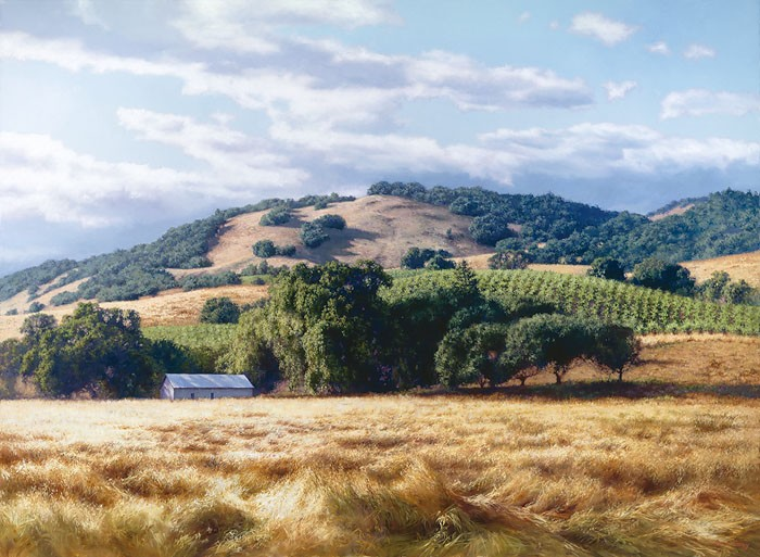 June Carey California Wine Country Canvas