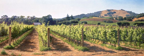 June Carey Vineyard Before the Harvest MASTERWORK EDITION ON Canvas