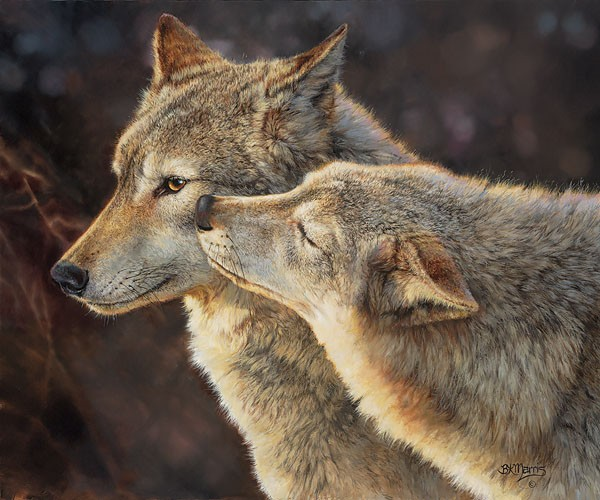 Bonnie Marris Wolf Kiss SMALLWORK EDITION ON Canvas