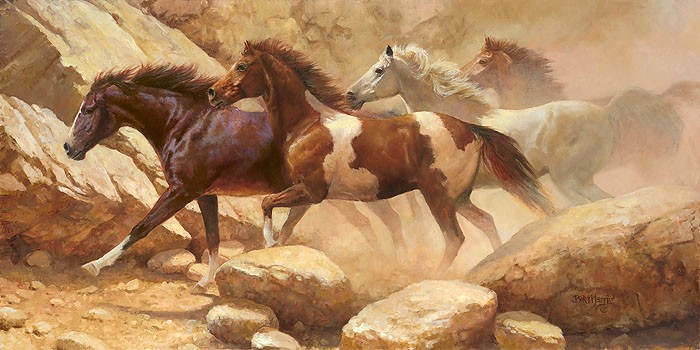 Bonnie Marris Into Blanco Canyon Canvas