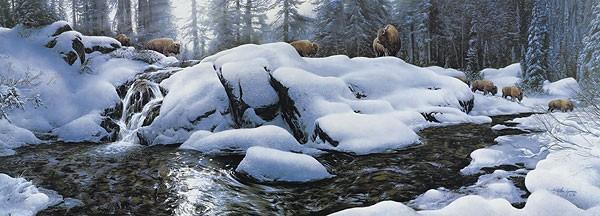 Stephen LymanHigh Creek Crossing