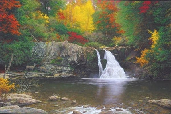 Larry Dyke Autumn In The Smokies By Larry Dyke Giclee On Canvas  Signed & Numbered