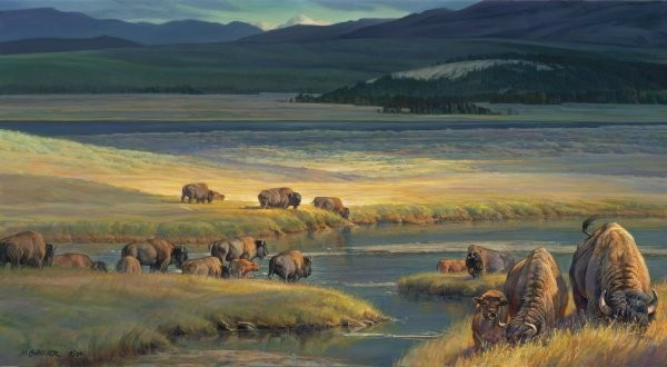 Nancy Glazier Buffalo Valley By Nancy Glazier Giclee On Canvas  Signed & Numbered