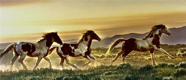 Nancy GlazierEarly Morning Run By Nancy Glazier Canvas  Signed & Numbered