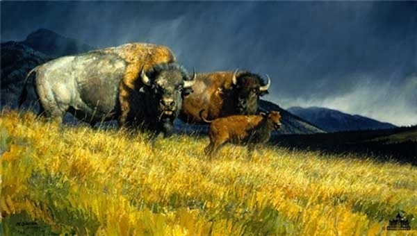 Nancy Glazier Stormy By Nancy Glazier Giclee On Canvas  Artist Proof