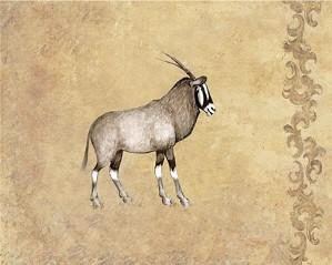 Gamboa - Wild Impala