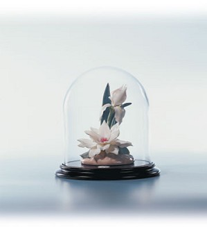 Lladro-Serenade In White Le300 2001-C
