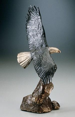Mark Hopkins-Bald Eagle