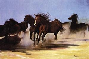 Gamboa-Wild Horses