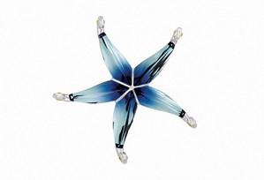Swarovski-Swarovski Cantil Ocean Blue Starfish