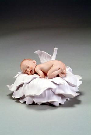 Giuseppe Armani-Rose Baby