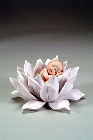 Giuseppe Armani-Water Lily Baby