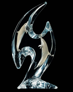Dan Medina-Dolphin Domain