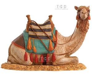 Ebony Visions_The Nativity Camel