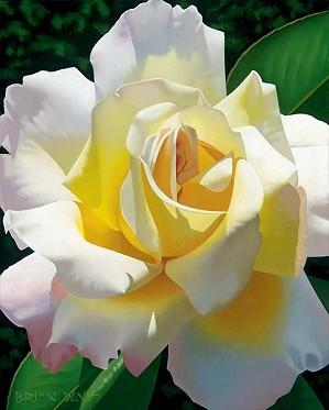 Brian Davis-Loves Rose