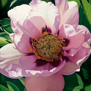 Brian Davis-Pink Peony