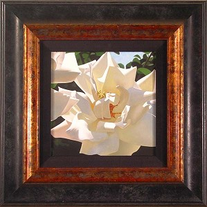Brian Davis-Radiant Rose Framed