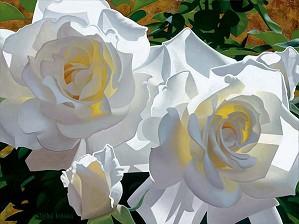 Brian Davis-White Roses Aglow