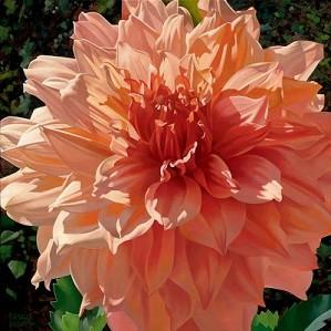 Brian Davis-Singing Orange Dahlia