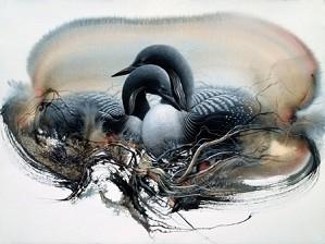 Lee Bogle-Nesting Loons II